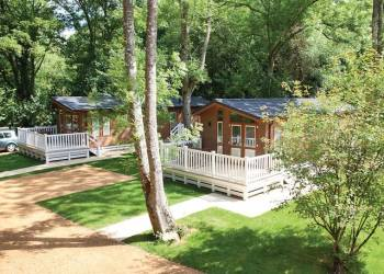 Merley Woodland Lodges - Holiday Park in Wimborne, Dorset, England
