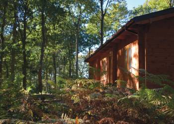 Woodland Park Lodges - Holiday Park in Ellesmere, Shropshire, England