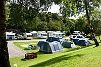Black Rock Caravan and Camping Park - Holiday Park in Evanton, Highlands, Scotland