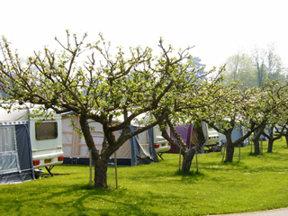 Arrow Bank Holiday Park - Holiday Park in Leominster, Herefordshire, England