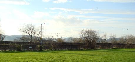 Owen's Caravan Park - Holiday Park in Abergele, Conwy, Wales