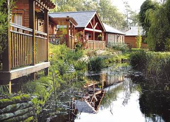 Tilford Woods - Holiday Park in Farnham, Surrey, England