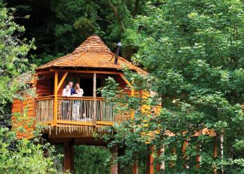 Sherwood Forest Lodges - Holiday Park in Sherwood Forest, Nottinghamshire, England