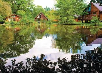 Whitemead Forest Park - Holiday Lodges in Forest of Dean, Gloucestershire, England
