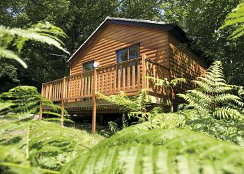 Woodland Lodges - Holiday Park in St Clears, Carmarthenshire, Wales