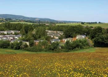 Peppermint Holiday Park - Holiday Park in Dawlish Warren, Devon, England