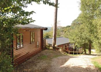 Sandy Balls Lodges - Holiday Park in Fordingbridge, Hampshire, England