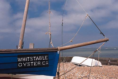 Alberta Holiday Park - Holiday Park in Whitstable, Kent, England