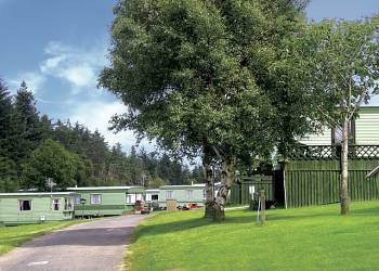 Springhouse Country Park - Holiday Park in Hexham, Northumberland, England