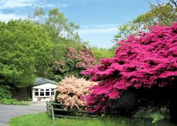 Aberdunant Country Park