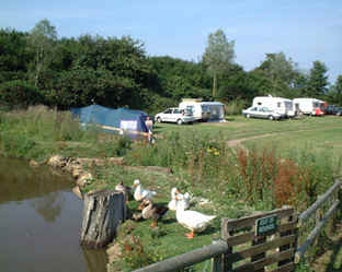 Old Barn Touring Park - Holiday Park in Sandown, Isle-Of-Wight, England