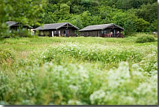 Carry Farm - Holiday Park in Tighnabruaich, Argyll-and-Bute, Scotland