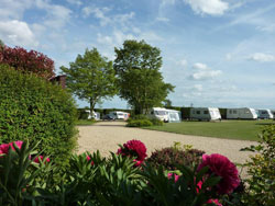 Delph Bank Touring Caravan and Camping Park - Holiday Park in Spalding, Lincolnshire, England