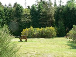 Glentrool Holiday Park - Holiday Park in Newton Stewart, Dumfries-and-Galloway, Scotland