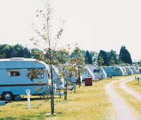 Kings Down Tail Caravan and Camping Park - Holiday Park in Sidmouth, Devon, England