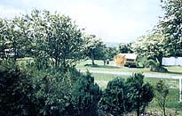 Roseville Holiday Park - Holiday Park in Goonhavern, Cornwall, England