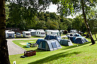 Black Rock Caravan and Camping Park - Holiday Park in Evanton, Highlands, Scotland