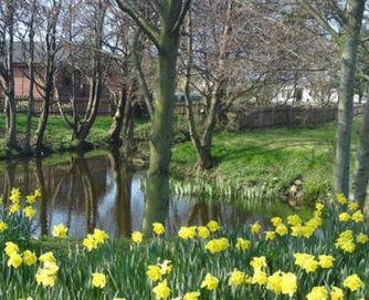 Beeston Regis Holiday Park - Holiday Park in Cromer, Norfolk, England