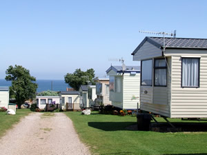 Ivy Farm Holiday Park - Holiday Park in Cromer, Norfolk, England