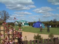 Greendale Farm Caravan and Camping Park - Holiday Park in Oakham, Leicestershire, England