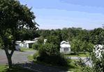 Charris Camping and Caravan Park - Holiday Park in Wimborne, Dorset, England