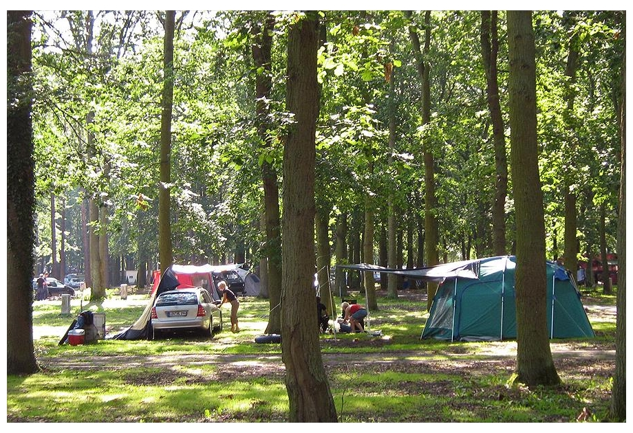 Camp. & Ferienpark Markgrafenheide - Just one of the great holiday parks in Mecklenburg Vorpommern, Germany
